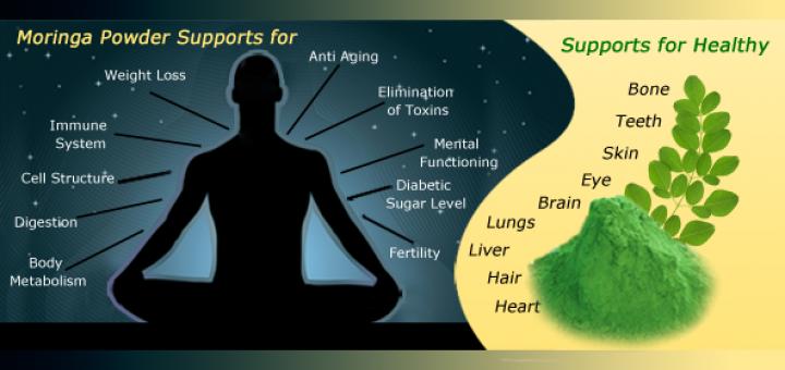 what is moringa powder?