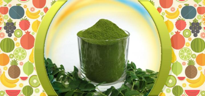 bulk moringa leaf powder