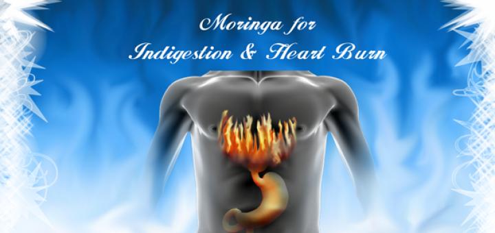 moringa for digestion
