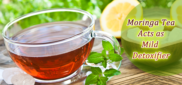 moringa tea cleanse