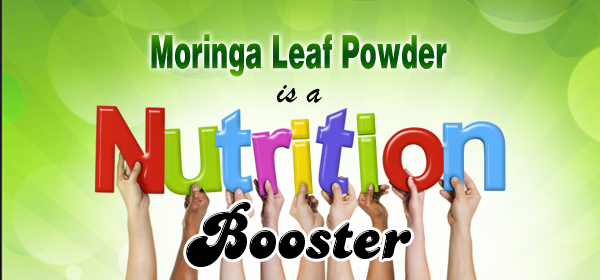 moringa for diet