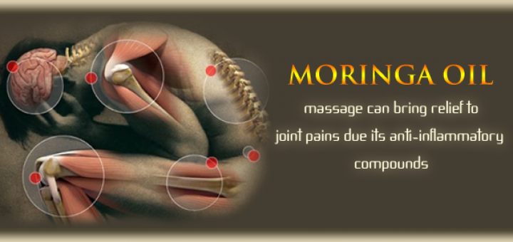 moringa for joint pain