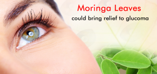 moringa for glaucoma
