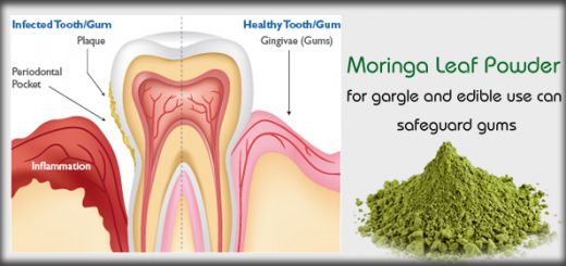 moringa for gum disease