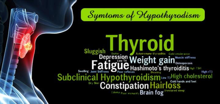 moringa for hypothyroidism
