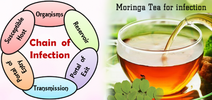 moringa for infections