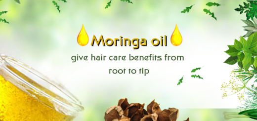 moringa for natural hair