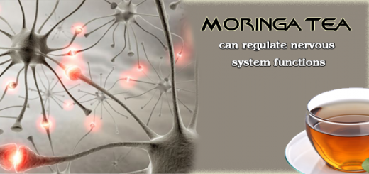 moringa for nerves