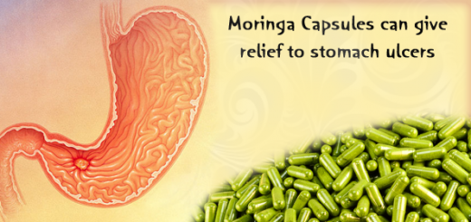 moringa for stomach ulcer