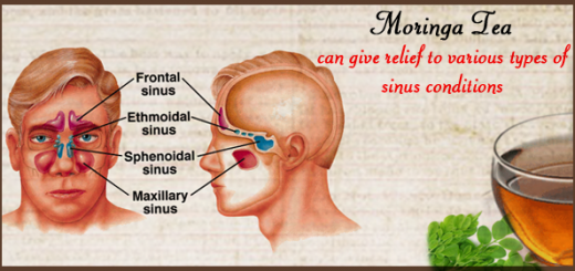 moringa for sinus infection