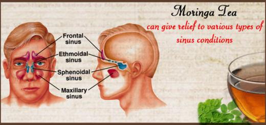 moringa for sinus infection