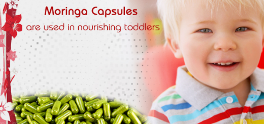 moringa for toddlers
