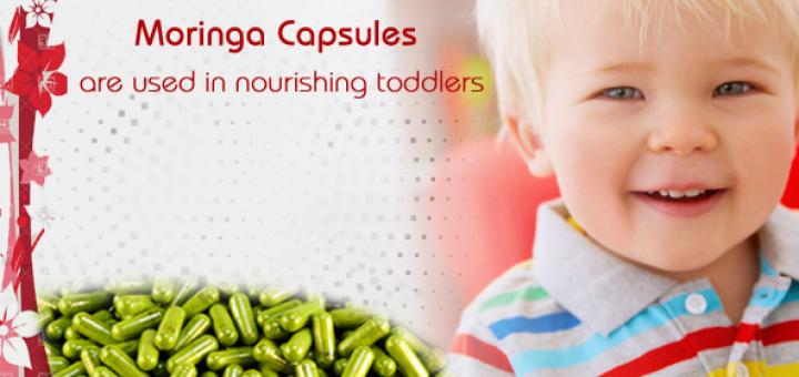 moringa for toddlers
